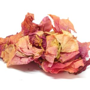 Order Bougainvillea from the Natural Spot