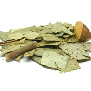 Order Eucalyptus from the Natural Spot